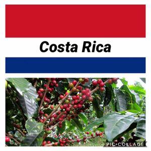自家焙煎コーヒー コスタリカ メサ農園200g