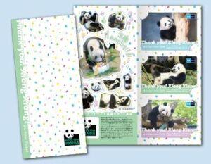 使用済み 完売品 ありがとうシャンシャン 東京メトロオリジナル24時間券 大人台紙付き3枚セット パンダ シャンシャン 香香