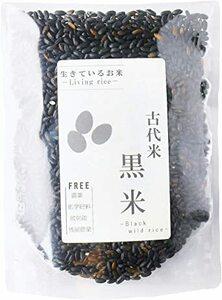 1kg 500g 250グラム (x 1) 生きているお米の黒米 無農薬 有機栽培の古代米 残留農薬 放射能ゼロ 真空チャック