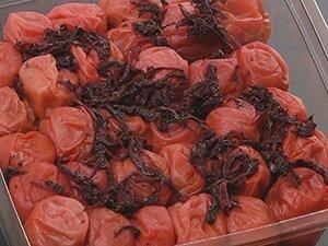限定価格!化学調味料不使用自然な味紀州南部産南高梅しそ漬け塩分約10%1kg4ZJ4
