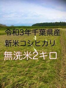令和3年新米コシヒカリ無洗米2kg