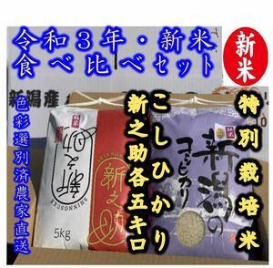 新米・令和3年産新潟 新之助 特別栽培米コシヒカリ 白米5kg各1個 食べ比べ
