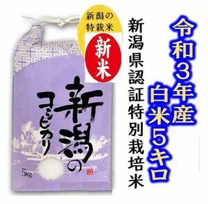 令和3年産 お米・新潟コシヒカリ・新潟県認証特別栽培米1等白米5キロ 1個091