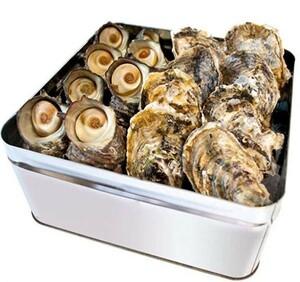 ◎★◎ 牡蠣【新鮮】牡蠣 さざえ カンカン焼き セット ( 冷凍 ) 牡蠣 20個 サザエ 10個 ミニ缶入り ( 牡蠣ナイフ・片手用軍手付き )