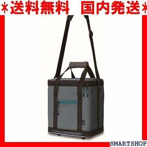 送料無料 国内発送 ダイワ 2020モデル ソフトクール 保冷バッグ ソフトクーラーボックス DAIWA 24