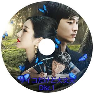韓国ドラマ 「サイコだけど大丈夫」 DVD版