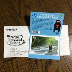クオカード QUOカード くまモン ご当地 500円分 新品 未使用 当選品