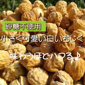 【CT】 ドライフルーツ 白いちじく 110g いちじく 白イチジク イチジク 無添加 砂糖不使用 ノンシュガー