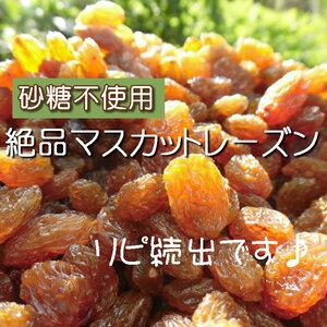【CT】 ドライフルーツ マスカットレーズン 400g レーズン マスカット 無添加 砂糖不使用 ノンシュガー