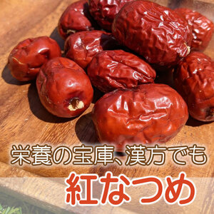 【FL】 ドライフルーツ 紅なつめ 100g なつめ ドライ棗 紅棗 無添加 砂糖不使用 ノンシュガー 砂糖未使用