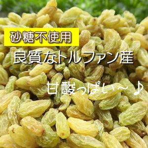【CT】 ドライフルーツ グリーンレーズン 1kg レーズン グリーン 無添加 砂糖不使用 ノンシュガー