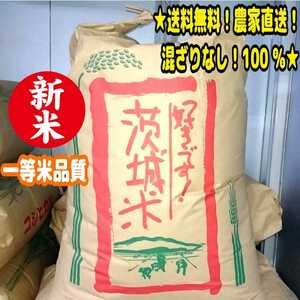★特別価格!送料無料!新米!一等米 令和3年 茨城県産「コシヒカリ」玄米 30kg 農家直送!混ざりなし 100% うるち米 お米 白米 減農薬 ②