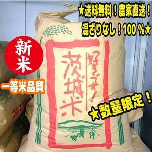 ★数量限定!今回限り!送料無料!新米!一等米 令和3年 茨城県産「コシヒカリ」玄米 30kg 農家直送!混ざりなし100% うるち米 お米 白米