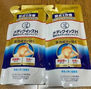 ロート製薬 シャンプー 2個セット 新品