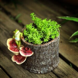 植木鉢 プランター 多肉 観葉植物 盆栽ポット かえる カエル おしゃれ 可愛い ガーデニング プレゼント AT12980