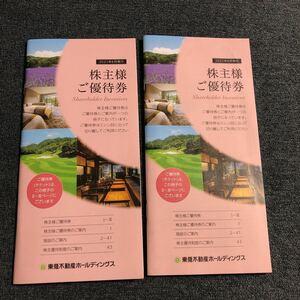 ◆東急不動産ホールディングス 株主優待券 2冊17枚綴 送料無料◆