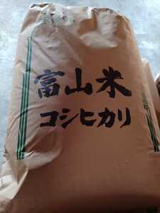 富山県産 コシヒカリ 一等米玄米30kg 令和3年 新米 検査済み 2
