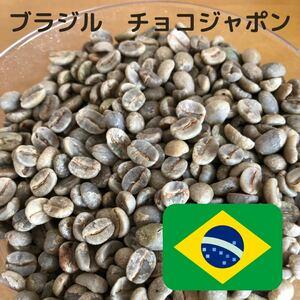 ブラジル チョコジャポン 生豆 800g