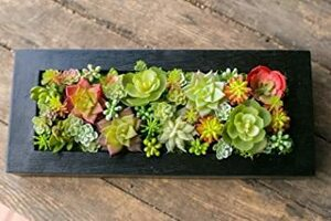 Lサイズ 多肉植物 造花 寄せ植え ギフト 多肉フェイクグリーンBOX (Lサイズ)人工観葉植物 フェイクグリーン インテリアグ