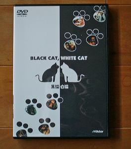 黒猫白猫 エミール・クストリッツァ監督 国内正規販売DVD