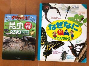 児童書 本 昆虫 NHKダーウィンが来た 昆虫クイズ図鑑 なぜなにQAこんちゅう 2冊セット