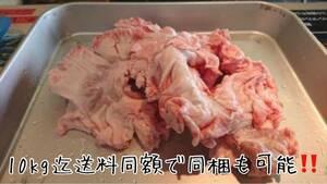 大トロホルモン 超希少 北海道産豚きく脂1.0kg きくあぶら 串料理 国産豚 キク脂 菊脂(キクアブラ)プリプリ!!10kg迄送料同額 同梱可!