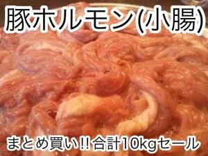 マルエスショウジ!!特別セール特価価格!!北海道産豚小腸 新鮮 急速冷凍!! 国産 豚ホルモン10kg!!国産豚(小腸、焼肉、もつ鍋)