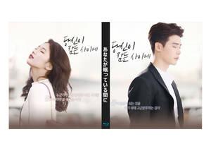 OST+あなたが眠っている間に Blu-ray版 (全16話)《日本語字幕あり》 韓国ドラマ