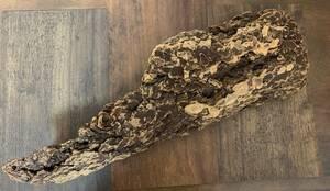 流木 天然 樹皮コルク エアプランツ 爬虫類 両生類 50㎝×6.5㎝×16㎝ ハンドメイド 装飾品 インテリア