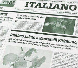 グリーン 【フジパック】 イタリア 新聞紙柄 包装紙 ラッピング 100枚 おしゃれでかわいいデザイン (グリーン)