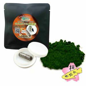 【桜めだか】オオミジンコ培養セット(オオミジンコ 乾燥卵カプセル+クロレラ微粒子パウダー)