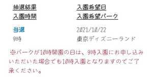 東京ディズニーランド 10月22日 当選済 1枚 チケット ワンデー パスポート TDL