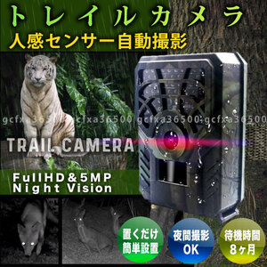 トレイルカメラ 1個 防犯 監視 小型 720P IP54 PIR 解像度 ワイヤレス 屋外 熱感知 赤外線 人感 センサー 配線不要 電池式 防水 庭 駐車場