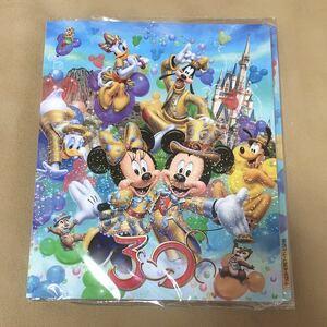 新品★ディズニーリゾート ディズニーランド フォトアルバム 30周年 ミッキーミニー TDR TDL TDS Disney