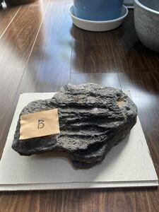 ADA山水石【中古】B
