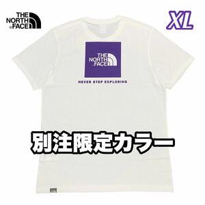 THE NORTH FACE ノースフェイス スクエアロゴ ボックスロゴ Tシャツ 海外限定 別注カラー