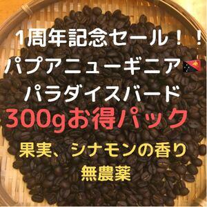 コーヒー豆 パプアニューギニア パラダイスバード 300g豆又は粉