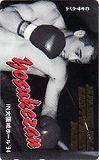 テレカ テレホンカード 西島洋介山 大阪城ホール'94 カードショップトレジャー