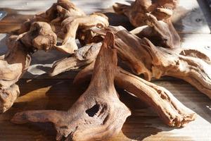 洋蘭 着生植物に 流木 ミニサイズ 1個  エアープランツ チランジア ラン 熱帯魚 レイアウト 爬虫類 両生類