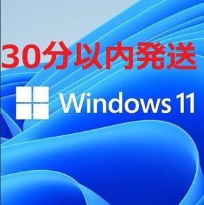 【タイムセール 認証保証】windows 11 pro プロダクトキー 正規 32/64bit 新規インストール/HOMEからアップグレード対応 PDF手順書あり