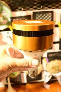 ビカク用ライト 植物育成ライト  @bikamori.com ライジング
