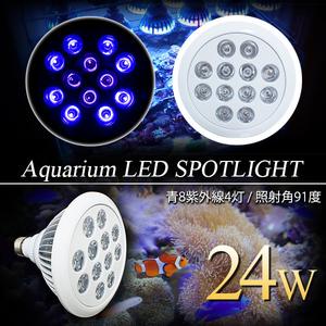 【送料無料~】LED 電球 スポットライト 24W(2W×12)青8紫外線4灯 水槽照明 E26 LEDスポットライト 電気 水草 サンゴ 熱帯魚 観賞魚