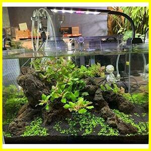 LED水槽ライト 熱帯魚ライト 水槽照明用 9W フルスペクトル 照明モード調整可能 観賞魚飼育 水草育成 25-45cm水槽対応 白 青 赤 緑led