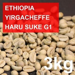 【自家焙煎】スペシャルティコーヒー生豆 イルガチェフェG1 ハルスケ村 3kg