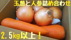 美味しいにんじんと玉葱の詰め合わせ!2.5㎏以上!