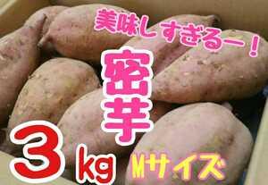 あま~い!美味しい!安納芋!種子島産 密芋!3㎏入り!