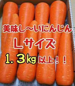 美味しいにんじん!Lサイズ!1.3㎏以上!