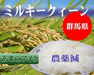 玄米10Kg(米袋込み)【ミルキークイーン】★令和3年新米★売れてます! 群馬県産直 低農薬 低アミロース