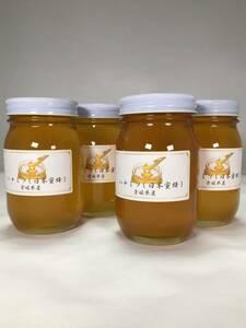 日本みつばちの ハチミツ 600g瓶 4個セット 送料無料 令和3年7月産(2年物) 日本蜜蜂の蜂蜜 日本みつばちのはちみつ