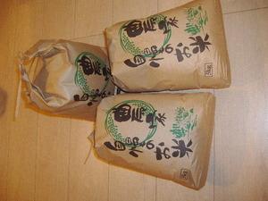 栃木産コシヒカリ 白米 令和2年産 5kg単位